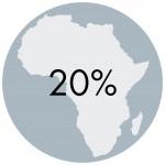 20% International
